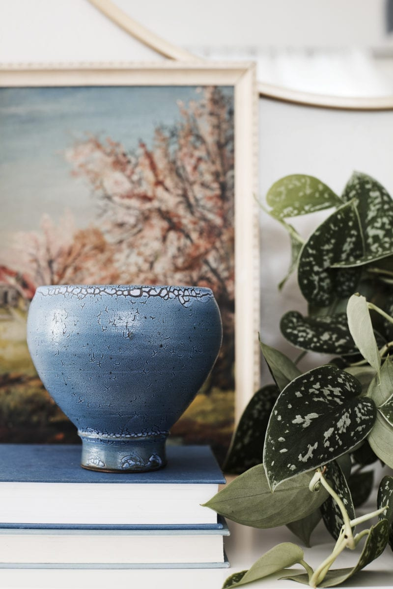 A close up image of an indoor plant, a pot and a painting