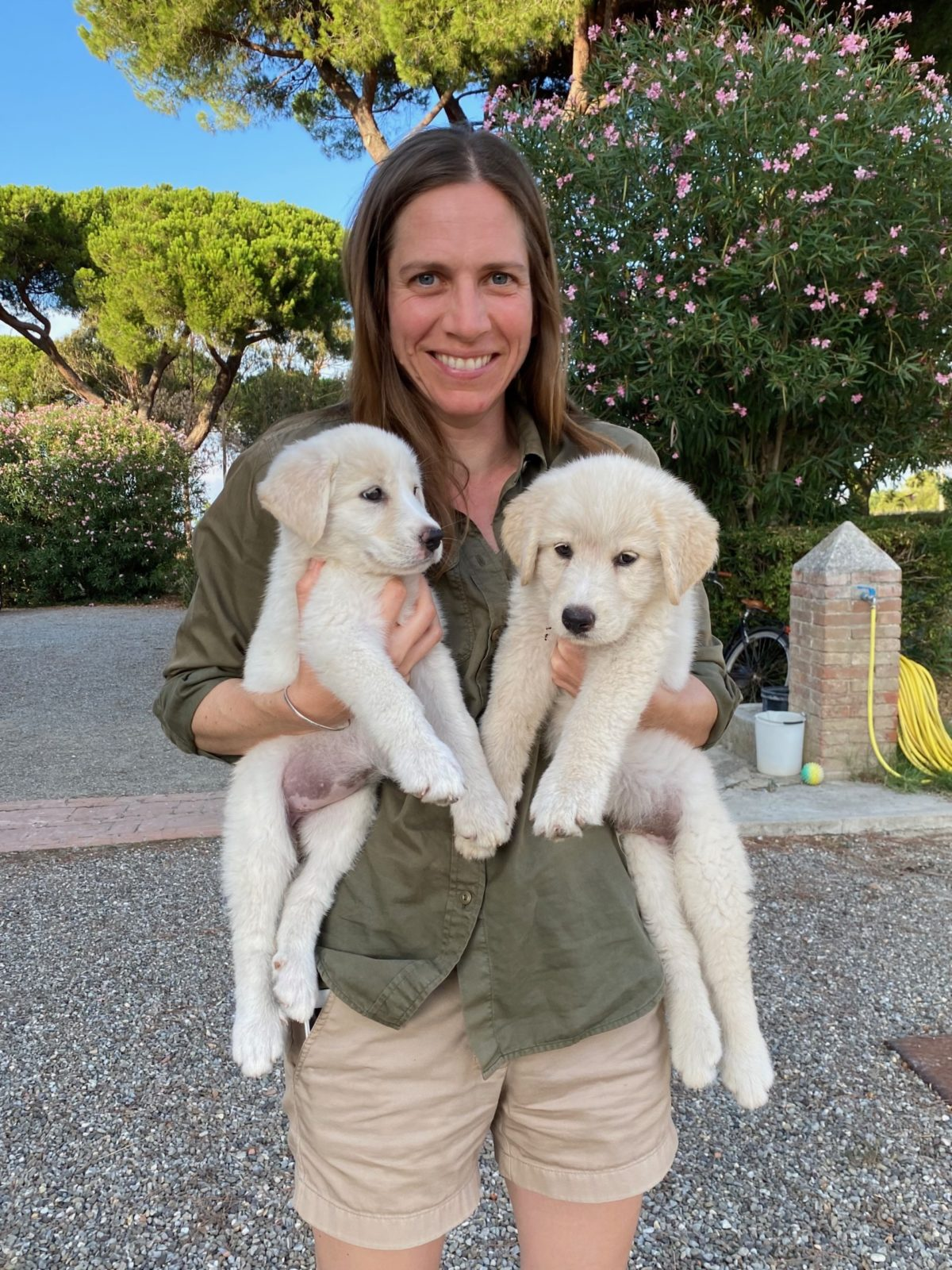 A woman holding two puppies