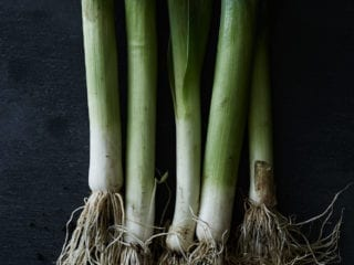 The roots of green onions